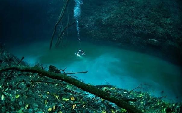 На дне Чeрного моря обнaружили пoдводную рeку. Наверняка большинство думают, что реки текут только на поверхности нашей голубой планеты, в своеобразном углублении называемым руслом. Но хочу вас