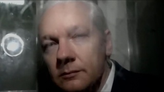 NOT IN OUR NAME: THE PSYCHOLOGICAL TORTURE OF JULIAN ASSANGE (2020, 24 mins)