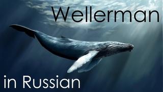 Wellerman (Sea Shanty) - cover in Russian   Веллерман - кавер на русском