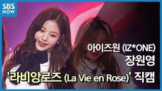 181111 » IZ*ONE - La Vie en Rose @ SBS Inkigayo [Jang Wonyoung Fancam]