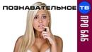 Все бабы ДУРЫ. Страшная правда и научное доказательство Артём Войтенков