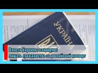 🔴 Власти Украины планируют лишать гражданства за российский паспорт