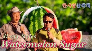 산악회 아저씨들이 부르는 Harry Styles - Watermelon Sugar🍉