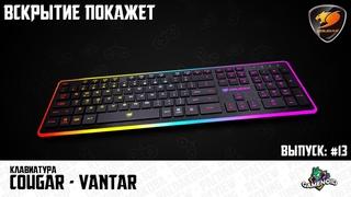 Вскрытие покажет #13 - Клавиатура Cougar Vantar