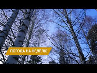 Погода на неделю в Удмуртии, 14-20 декабря