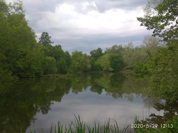 здесь картинки озерского края лица пересадка лица