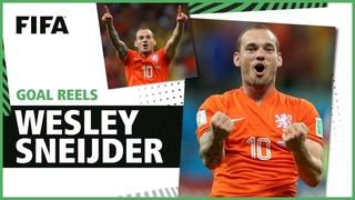 Уэсли Снейдер. Голы на Чемпионатах мира