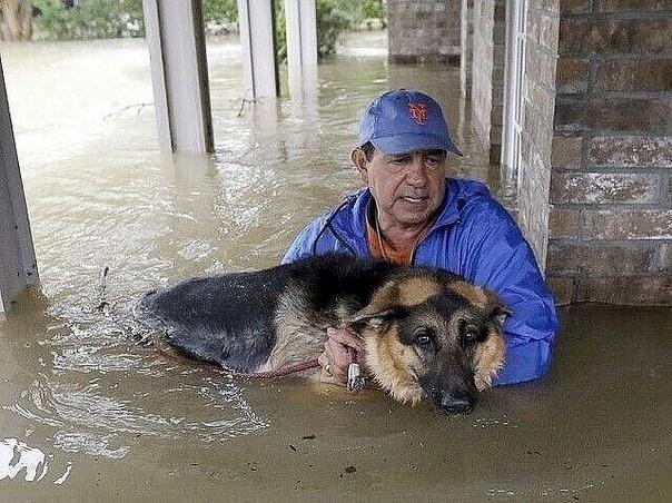 Так выглядит человечность!