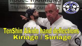 TenShin Aikido Hand Deflections FREE online class | Kiriage - Suriage