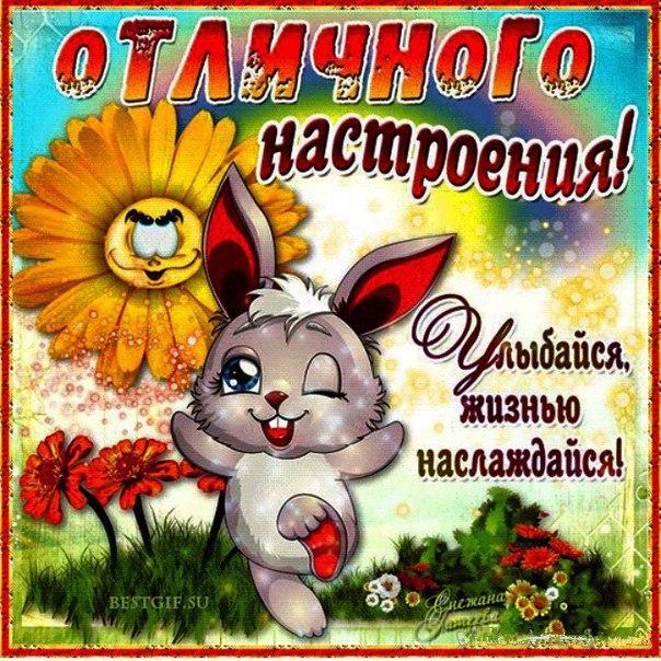открытки с пожеланием хорошего дня и отличного настроения анимационные эта