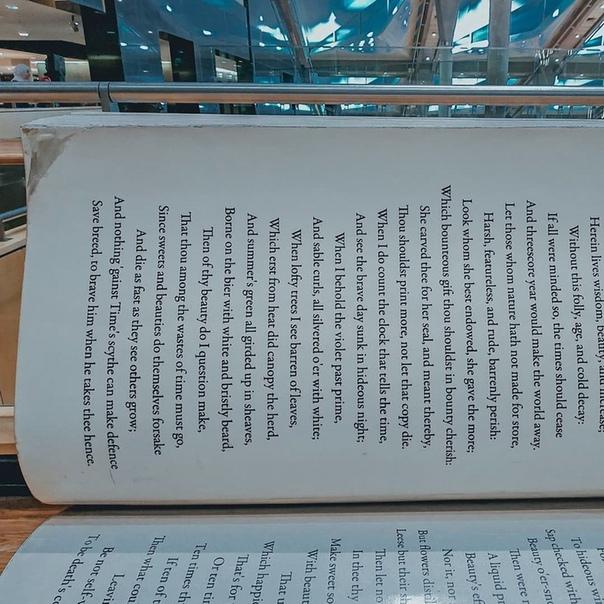 Удивительная скамейка в Александрийской библиотеке, украшенная сонетами Шекспира