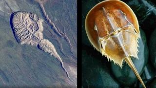 Тайна Батагайского кратера. Что здесь ищут ученые | Факты