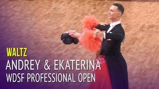 Waltz = WDSF PD Open Semi Final = Andrey Motyl & Ekaterina Kim