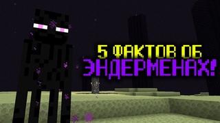 5 ФАКТОВ ОБ ЭНДЕРМЕНАХ - Майнкрафт
