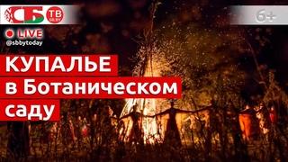 Огненное шоу в Ботаническом саду Минска в праздник Ивана Купалы | ПРЯМОЙ ЭФИР