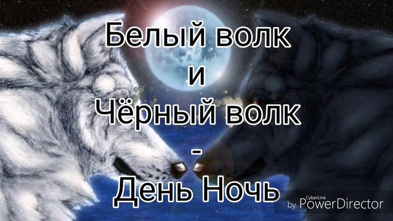 Белый волк и Чёрный волк День Ночь
