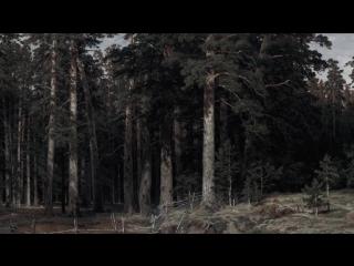 Hd beauty (2014) rino stefano tagliafierro (полная версия) (ожившие картины)