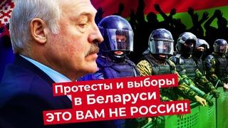 Лукашенко введёт войска? Последствия протестов в Беларуси и реакция общества