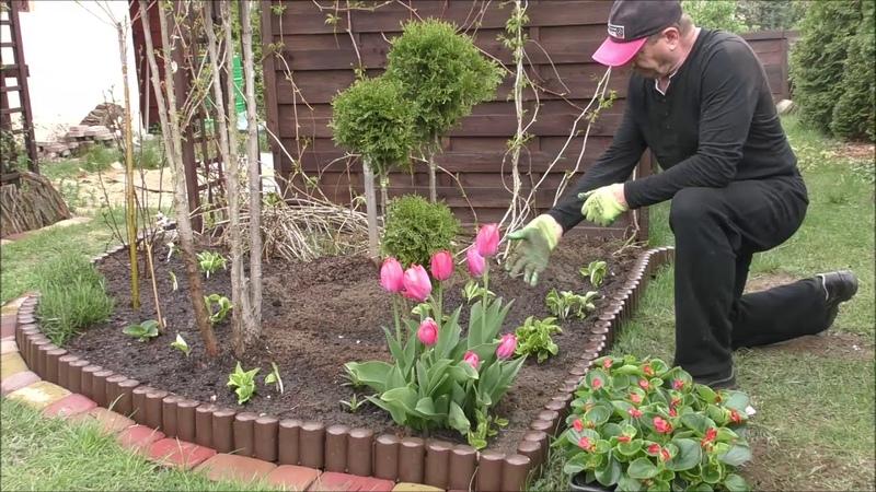 🎋GARDEN 79 Flower arrangements Gabion and flower bed Kwiaty w gabionie