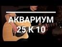 Аквариум - 25 к 10 (БГ) - Акустический кавер
