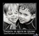 Фотоальбом Вани Олексина