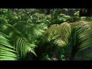 BBC Тайны Тихого океана. Фильм 1 Океан островов