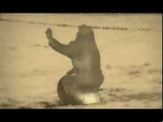 New Model Army - Queen Of My Heart