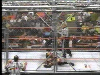 Steel Cage Match The Rock vs Shane McMahon WWF World Title