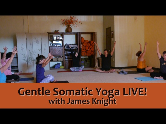 Gentle Somatic Yoga LIVE! with James Knight, E-RYT c.4