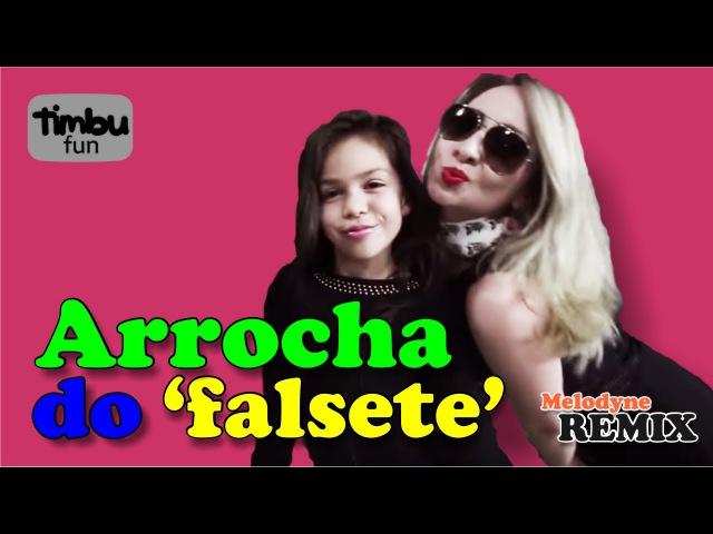Arrocha do Falsete Remix By Timbu Fun