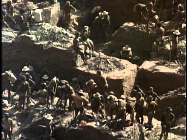 7 Одиссея Жака Кусто Золотая река