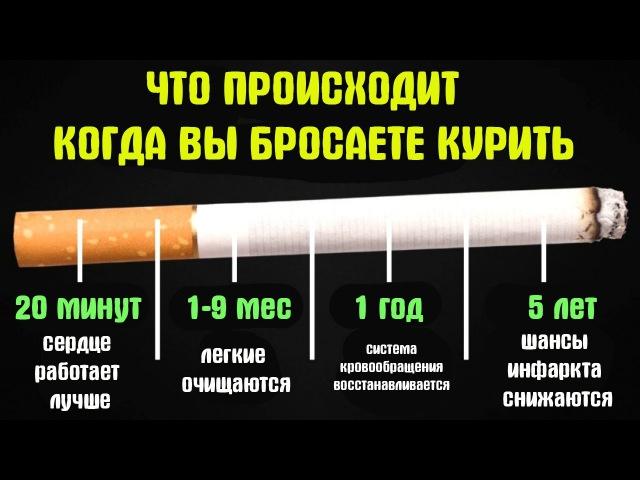 действительности после того как бросил курить картинки вождения обеспечен