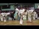 【新極真会】 四股 空手トレーニング:緑健児代表セミナー SHINKYOKUSHINKAI KARATE Training SHI