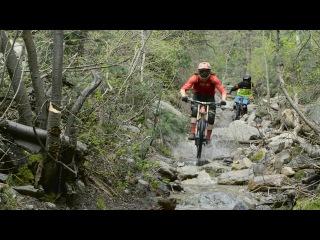 Mountain Biking Little Cottonwood Canyon