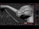 Dragons Workshop COMPLETE Bundle By Jesse Sandifer P6 Head Design SAMPLE