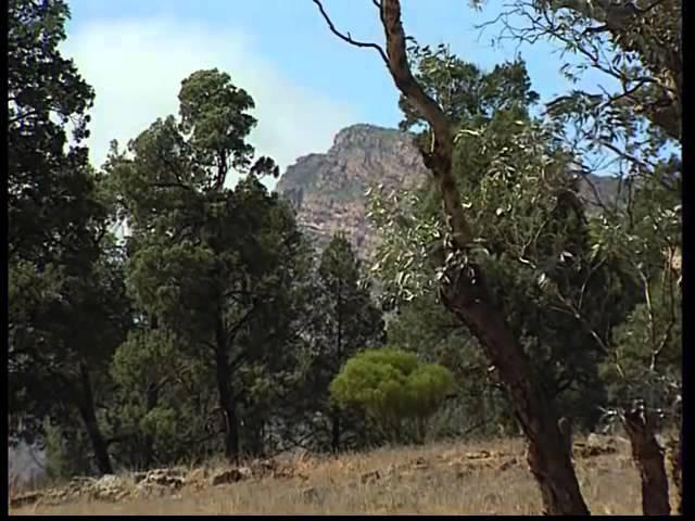 Австралия Таинственный остров Колониальная культура на фоне дикой природы