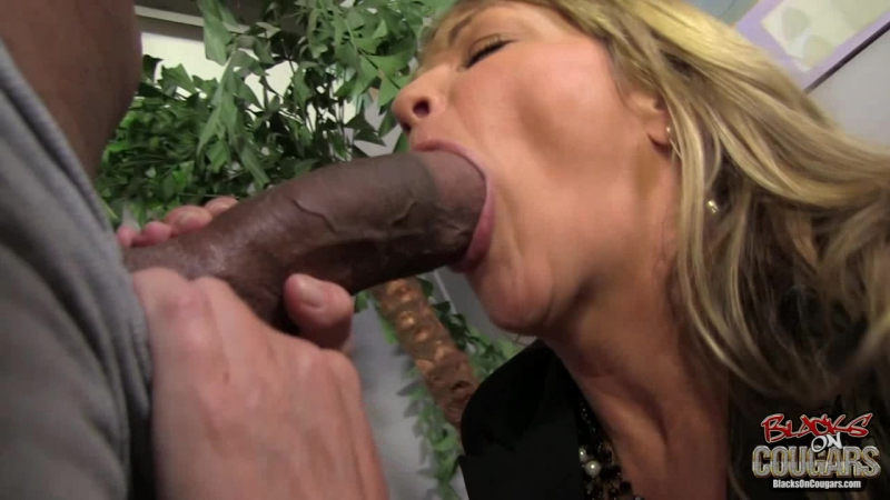 Blacks On Cougars Shayla Laveaux HD 720, Black. Blonde, Blowjob, Cougars, Cumshot, Facial, Interracial,