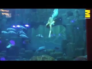 25-летняя студентка работает русалкой в париже