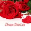Роза-Красная.рф