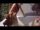 Зіда і Роза приймають ванну (1) (Сестрички Соні)