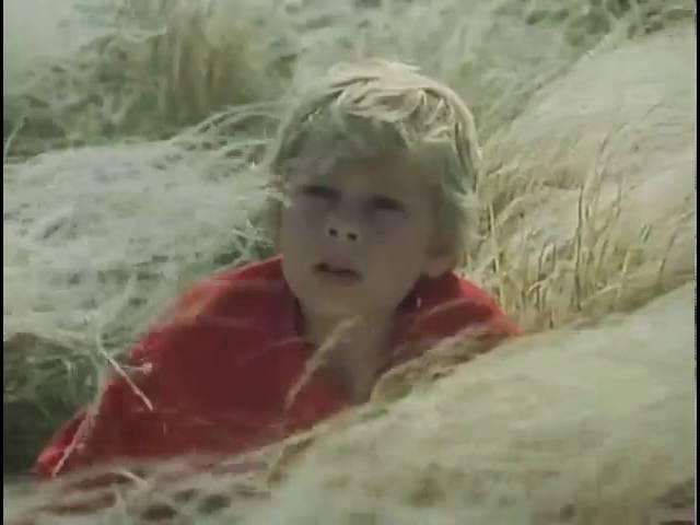 песня Ковыль из фильма Степь 1977 года