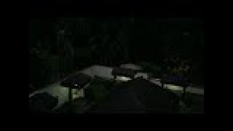 Saracura do Banhado Pousada D'Pillel Ilha Grande RJ Brasil IMG 1487 103 9 MB 06h16 10ago17