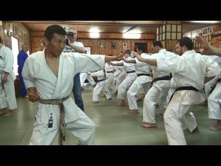 Тигр Каратэ. Легенда японского каратэ Микио Яхара в Московском Кодокане