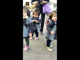 На прогулку! В одной счастливой китайской семье родились сразу три девочки-близняшки