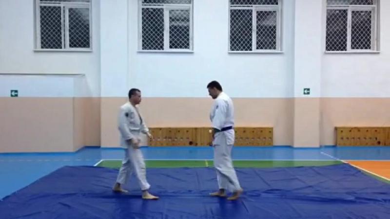 айкидо айкибудо кокюхо тенчинаге aikido aikibudo кмв минводы новыйгод 2017 спорт боевыеискусства