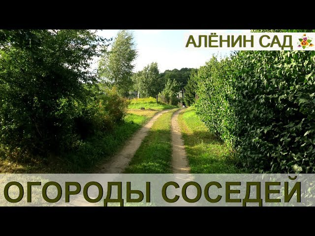 Огороды соседей 👍 Allotments tour