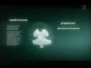 Научное видео Отличия в психологии и мышлении мужчины и женщины