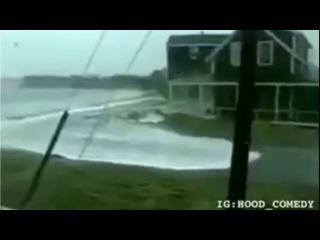 Житель Флориды - Vine Video