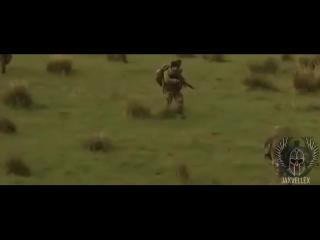 "[jaxvellex] the sas | special air service ""britain's best"" (2018 ᴴᴰ)"