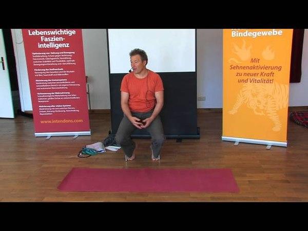 1 2 Harald Xander Die 5 Phasen der inneren Bewegung Intendons Faszien Coach 1